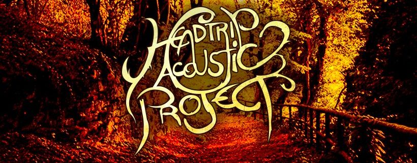 Headtrip Acoustic Project